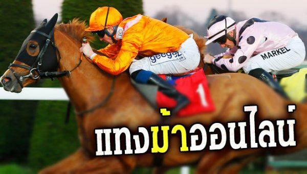 ม้าแข่งออนไลน์ เดิมพันกับสัตว์ 4 ขา ทายผลจุใจบนหน้าจอโทรศัพท์มือถือ